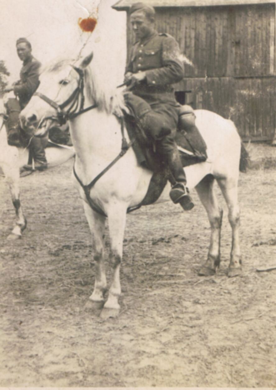skan_014-dop-1918-20